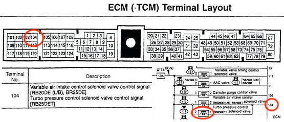 Rb25det Neo Ecu Wiring Diagram